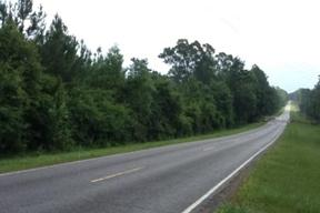 greene county ms road